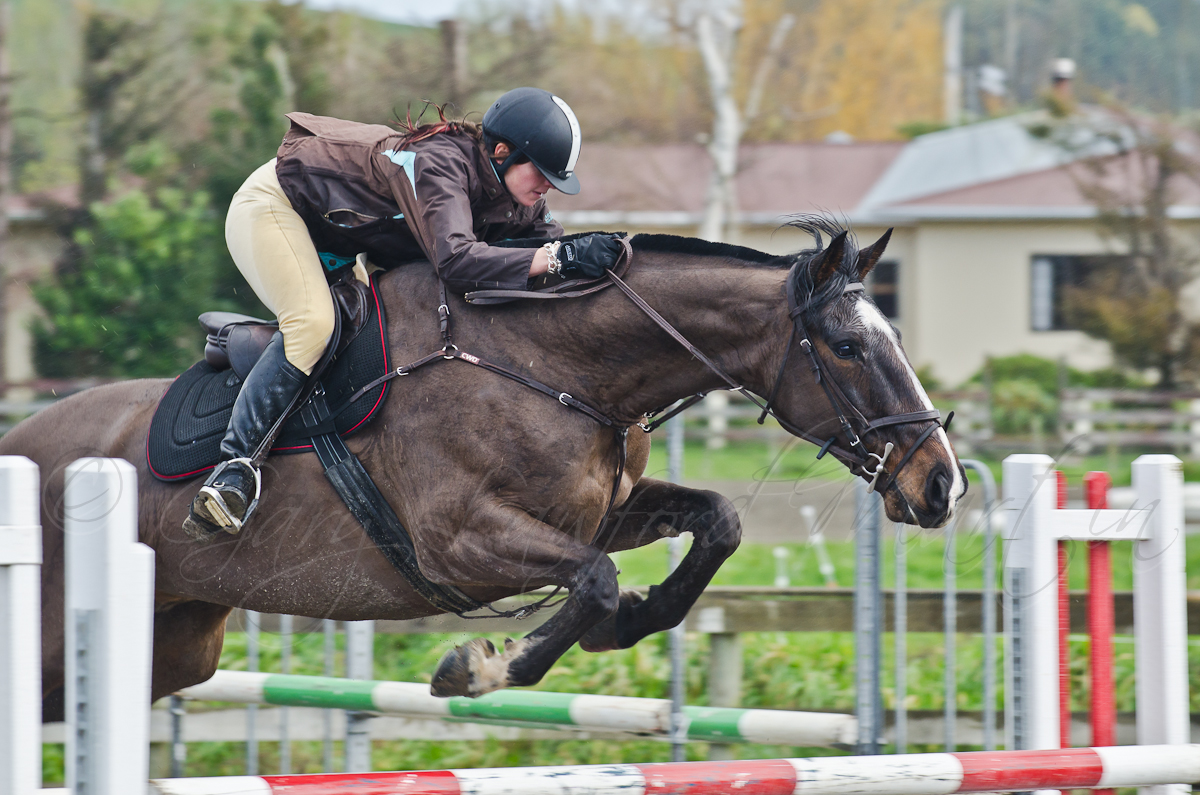 Show Jumping 41-6