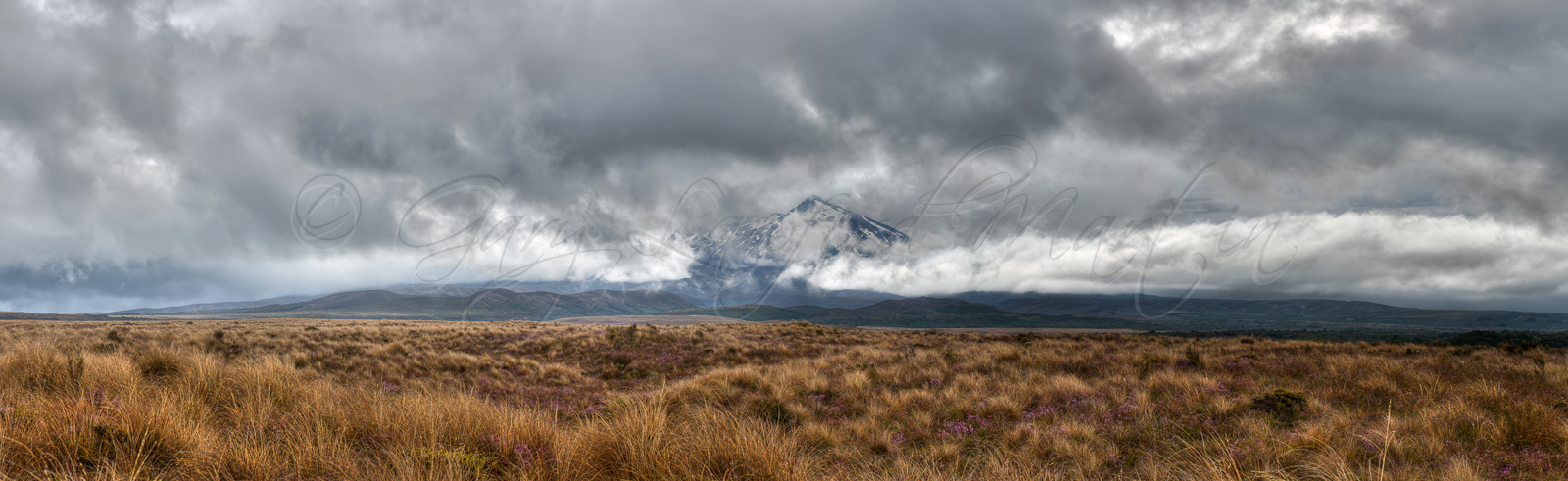 Shrouded Ruapehu Showcase