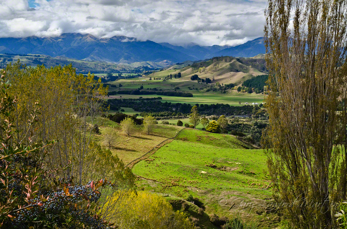 Mangaweka Valley