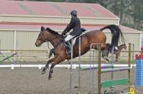 Show Jumping 38-5 Rain