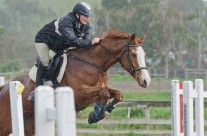 Show Jumping 39-3 Heavy Rain