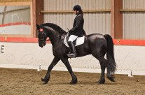 Indoor Dressage 13-2