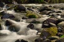 Mangatawai Stream