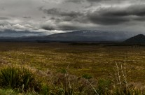 Tongariro National Park Print