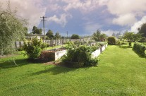 Vege Garden 02